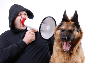 man yelling at dog small