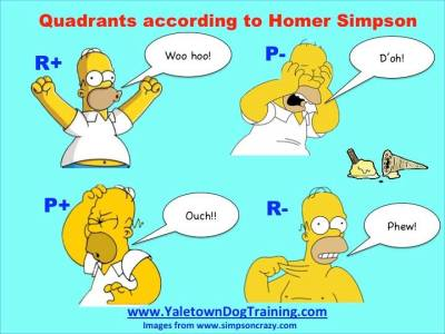homer quadrants