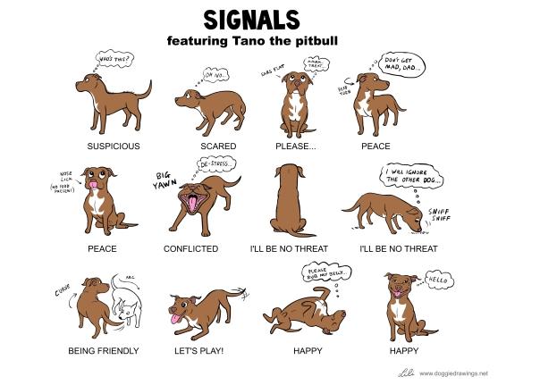 signals tano