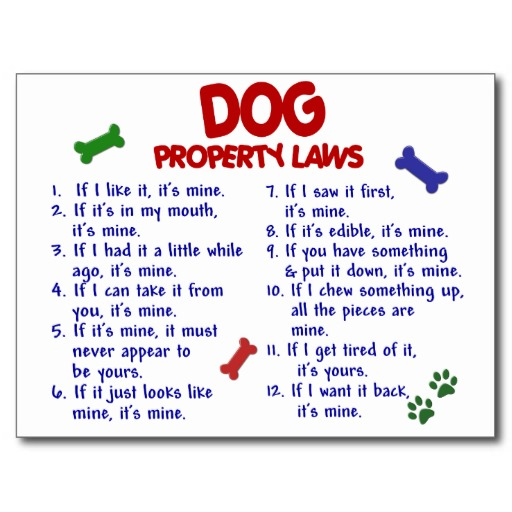 dog_property_laws_2_post_cards-r9689350a6fa040fabb944c17bb09bece_vgbaq_8byvr_512